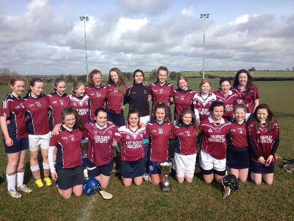 minor camogie 2